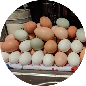 Farm-Fresh Eggs (Dozen)